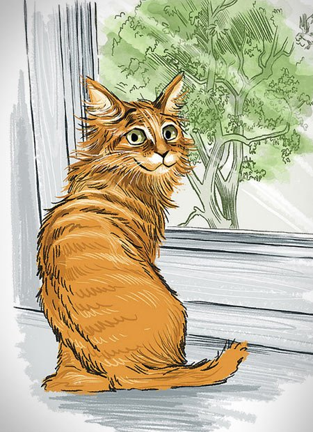 Cat yearning to be outside