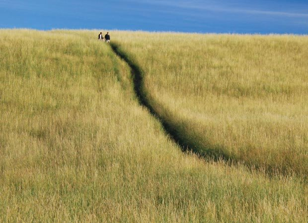 """""""Coming Down 'The Lump' Hill"""" by Dianne Sherrill."""