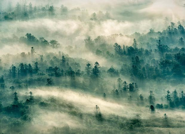 """Thru the Mist"" by Kathryn Greven. Category Winner – Landscape."