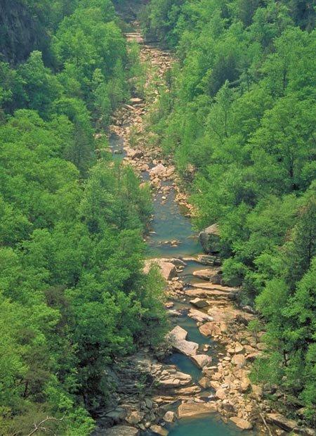 Tallulah Falls walks the line