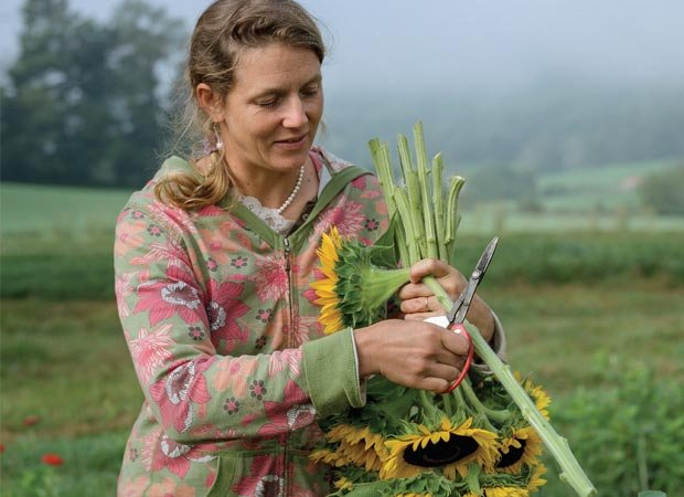 Harvesting Beauty