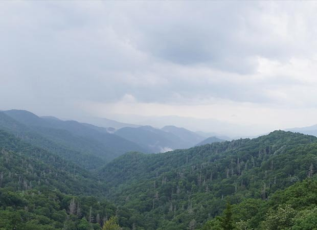 Newfound Gap Road, Great Smoky Mountains National Park