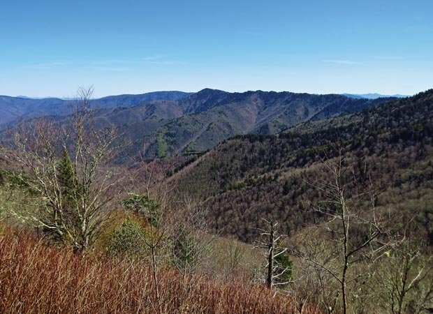 The Balsam range