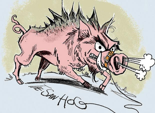 The Saw Hog