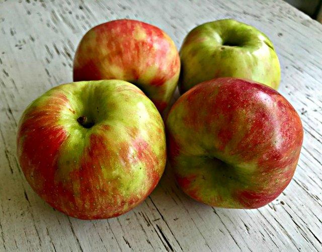 apples edited.jpg