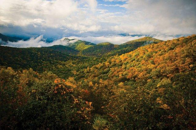 Four Hikes, Four Experiences