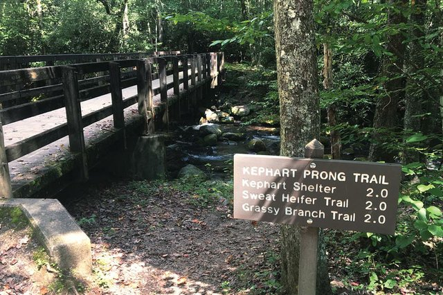 Kephard Prong Trail