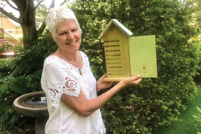 A home for native bees