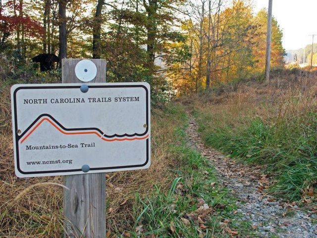 MST_Trail and sign_FALA.jpg