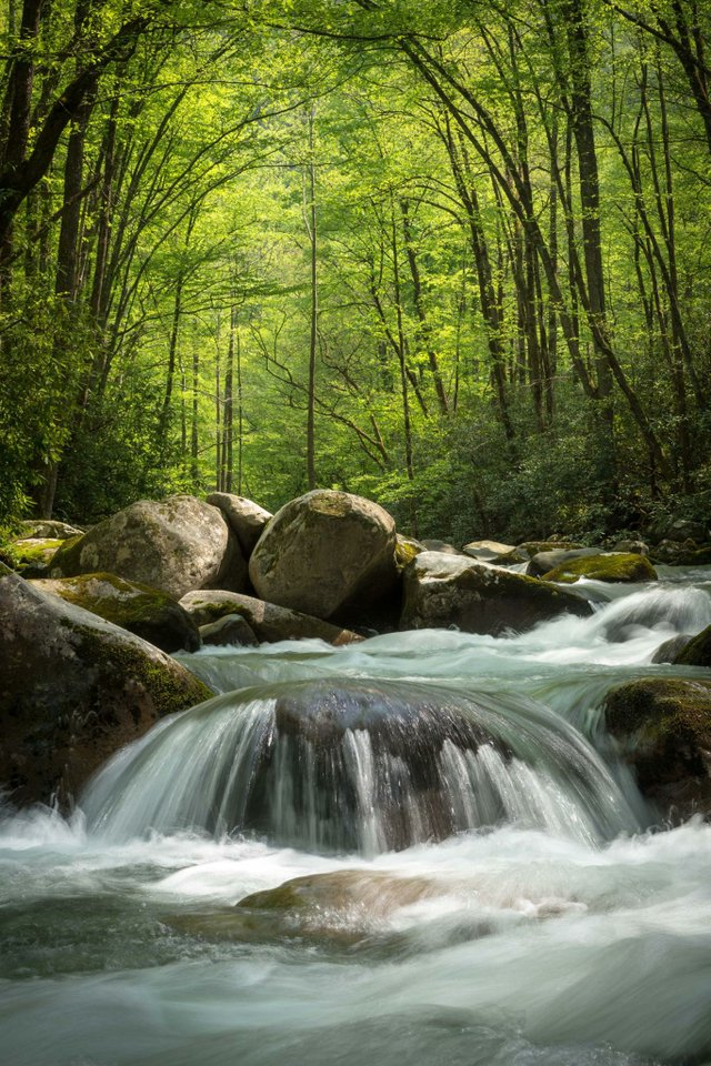 Big Creek by Jon Reynolds.jpg