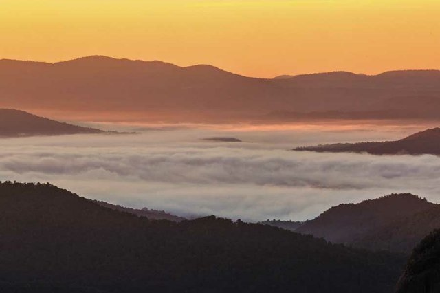 Thermal inversion in the Smokies