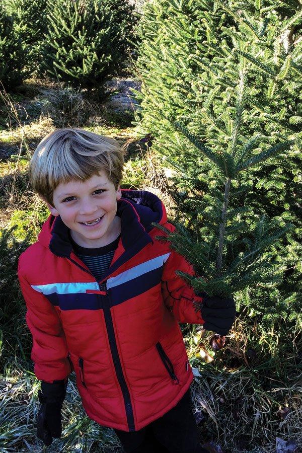 dept_christmastrees2.jpg