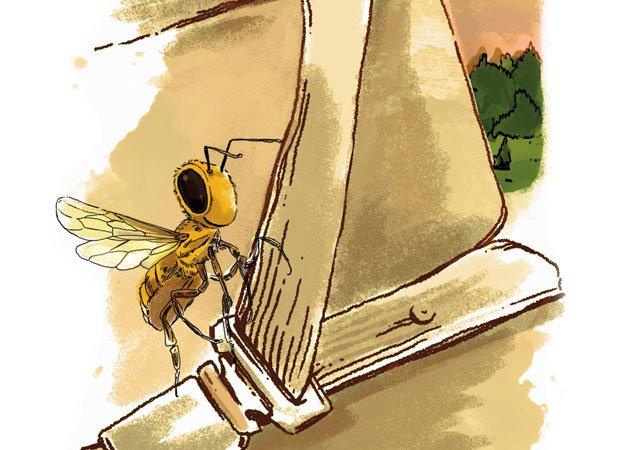 My honeybees