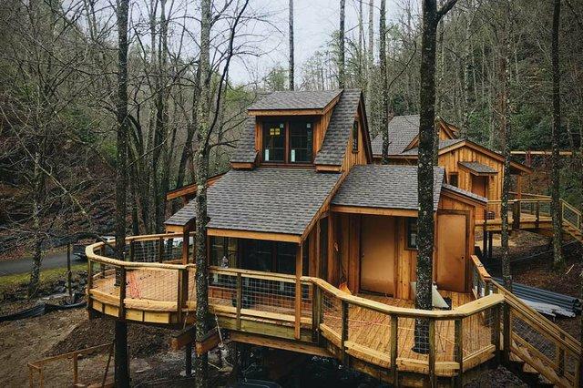 treehouses2.jpg