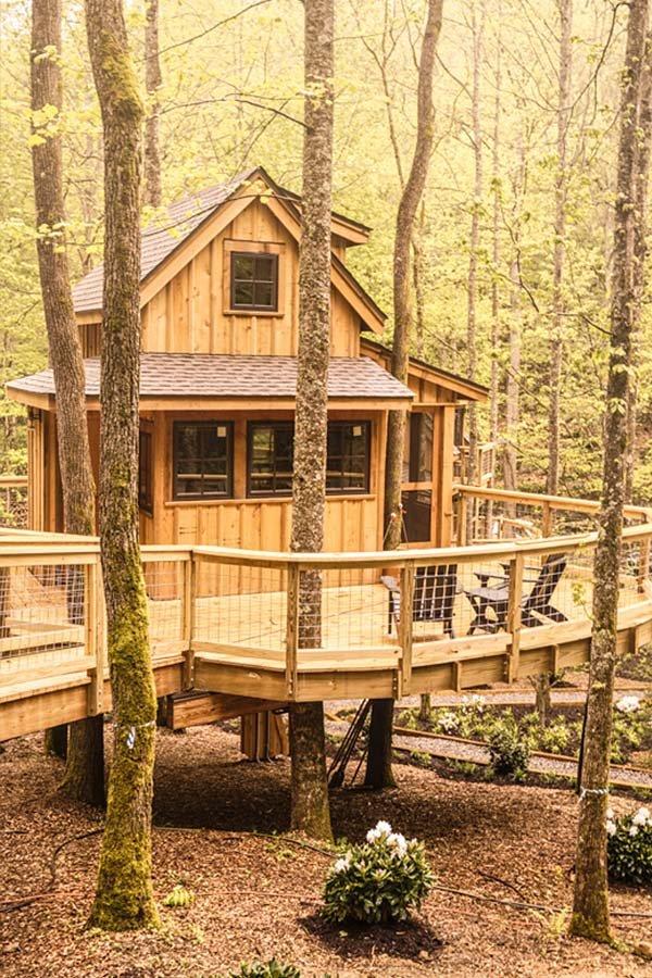 treehouses6.jpg