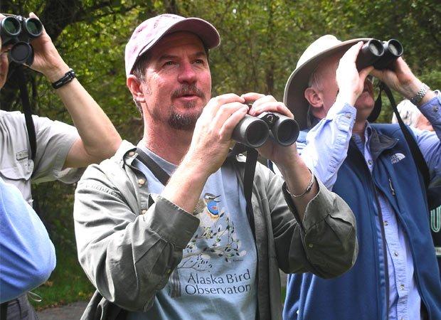 Birding in summer