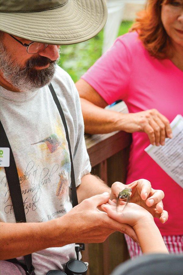 Discover Ijams Hummingbird Festival