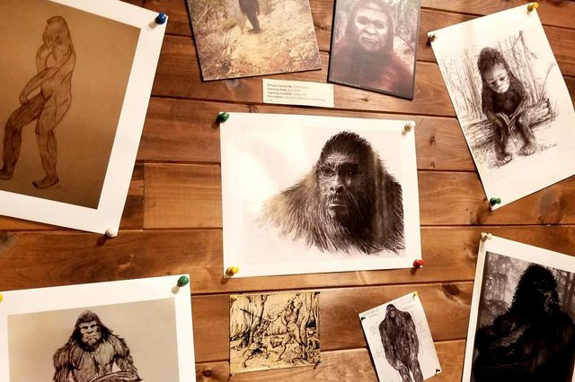A Fascination with Bigfoot