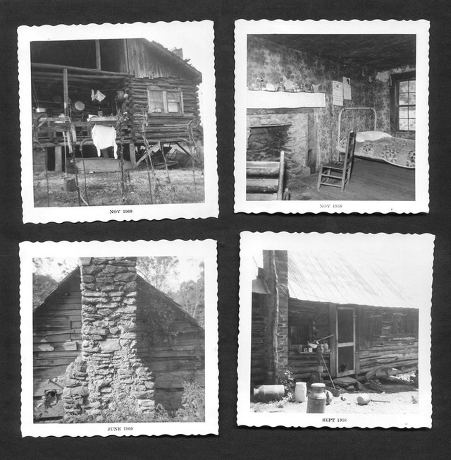 The Enduring Allure of Log Cabins