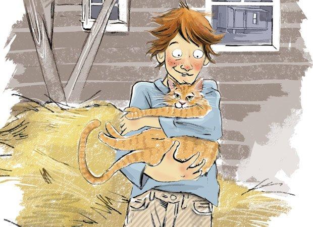 Farmhouse cat
