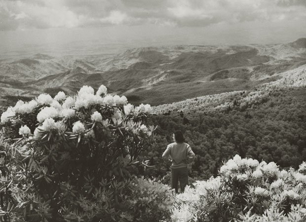 Near Grandfather Mountain