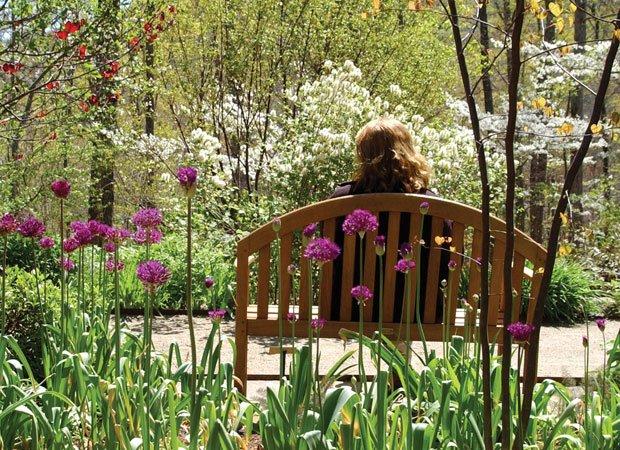 N.C. Arboretum