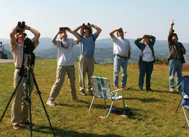 birdwatchers.jpg