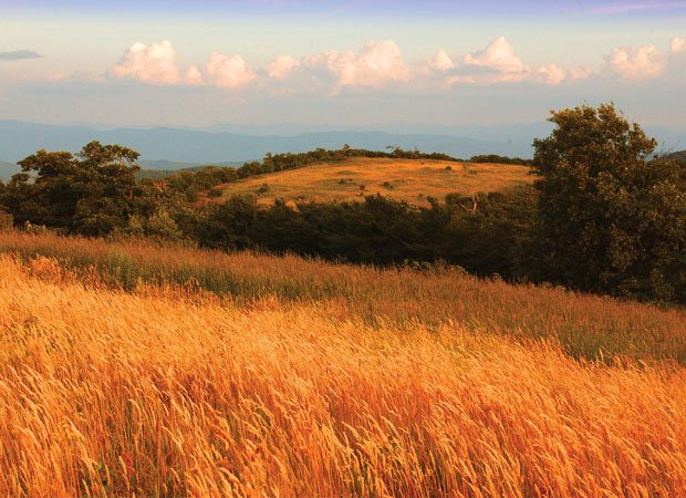 Cherohala view